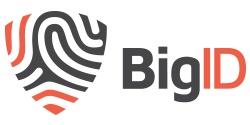 BigID Support Portal